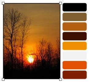 IMG_0605_palette