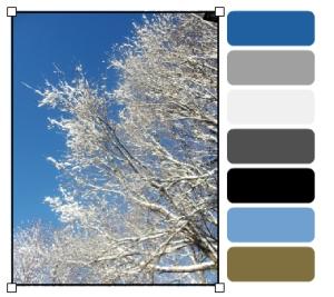 IMG_3952_palette